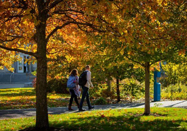 University at Buffalo Economic Impact Study